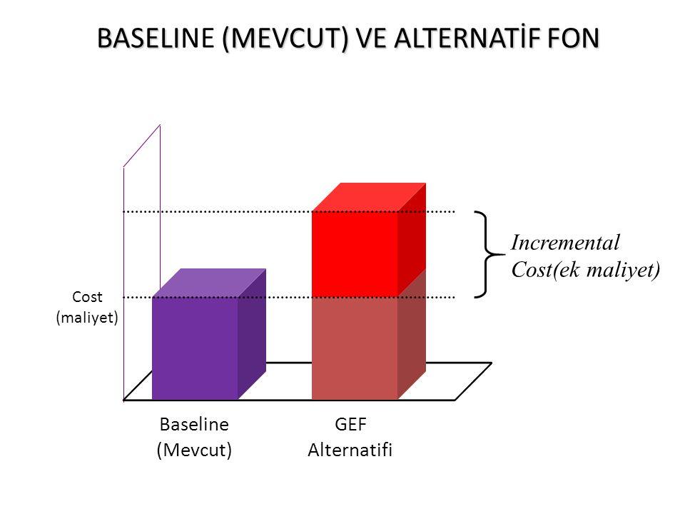 BASELI (MEVCUT) VE ALTERNATİF FON BASELINE (MEVCUT) VE ALTERNATİF FON Baseline (Mevcut) GEF Alternatifi Cost (maliyet) Incremental Cost(ek maliyet)