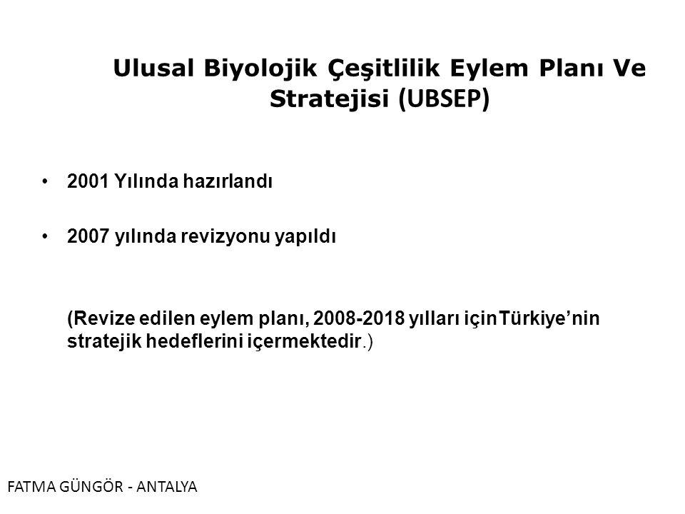 Ulusal Biyolojik Çeşitlilik Eylem Planı Ve Stratejisi (UBSEP) 2001 Yılında hazırlandı 2007 yılında revizyonu yapıldı (Revize edilen eylem planı, 2008-2018 yılları içinTürkiye'nin stratejik hedeflerini içermektedir.) FATMA GÜNGÖR - ANTALYA
