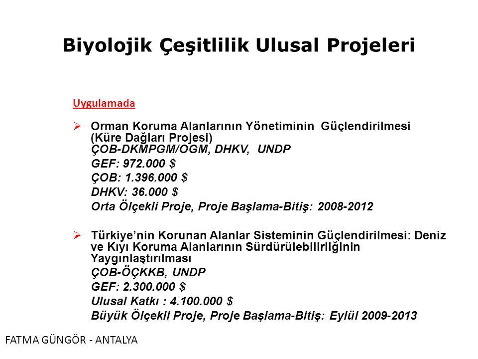 Biyolojik Çeşitlilik Ulusal Projeleri Uygulamada  Orman Koruma Alanlarının Yönetiminin Güçlendirilmesi (Küre Dağları Projesi) ÇOB-DKMPGM/OGM, DHKV, UNDP GEF: 972.000 $ ÇOB: 1.396.000 $ DHKV: 36.000 $ Orta Ölçekli Proje, Proje Başlama-Bitiş: 2008-2012  Türkiye'nin Korunan Alanlar Sisteminin Güçlendirilmesi: Deniz ve Kıyı Koruma Alanlarının Sürdürülebilirliğinin Yaygınlaştırılması ÇOB-ÖÇKKB, UNDP GEF: 2.300.000 $ Ulusal Katkı : 4.100.000 $ Büyük Ölçekli Proje, Proje Başlama-Bitiş: Eylül 2009-2013 FATMA GÜNGÖR - ANTALYA