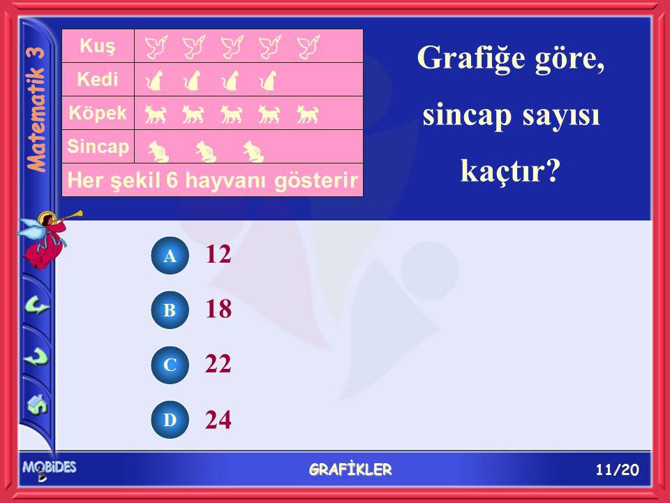 11/20 GRAFİKLER Grafiğe göre, sincap sayısı kaçtır.