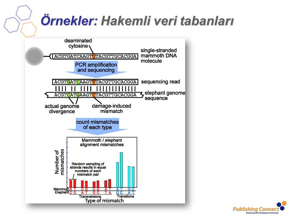 Örnekler: Hakemli veri tabanları