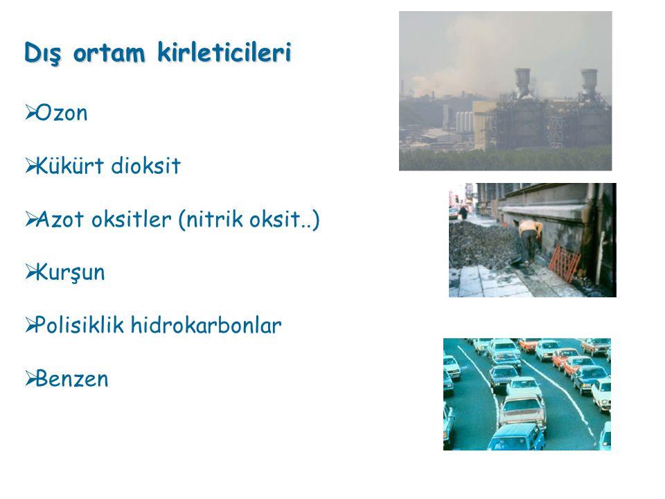 Dış ortam kirleticileri  Ozon  Kükürt dioksit  Azot oksitler (nitrik oksit..)  Kurşun  Polisiklik hidrokarbonlar  Benzen