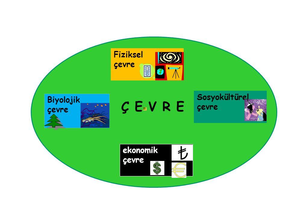 Biyolojik çevre Fiziksel çevre ekonomik çevre Sosyokültürel çevre Ç E V R E