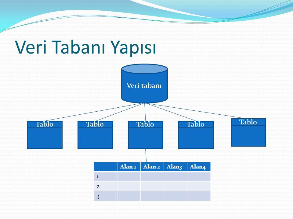Veri Tabanı Yapısı Veri tabanı Tablo Alan 1Alan 2Alan3Alan4 1 2 3
