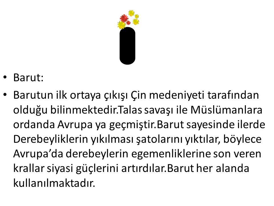 BİLİM MİRASI BİRUNİ 10.yy da yaşamış Türk bilginlerindendir Gazneli Mahmutun sayesinde bilimsel çalışmalarını sürdürmüştür.