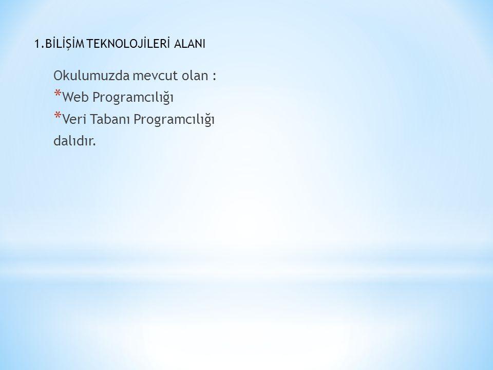 1.BİLİŞİM TEKNOLOJİLERİ ALANI Okulumuzda mevcut olan : * Web Programcılığı * Veri Tabanı Programcılığı dalıdır.