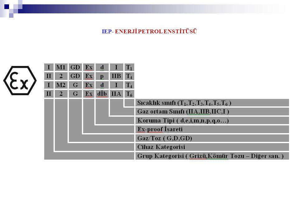 IEP- ENERJİ PETROL ENSTİTÜSÜ
