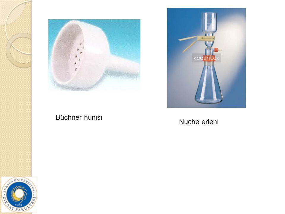 Büchner hunisi Nuche erleni