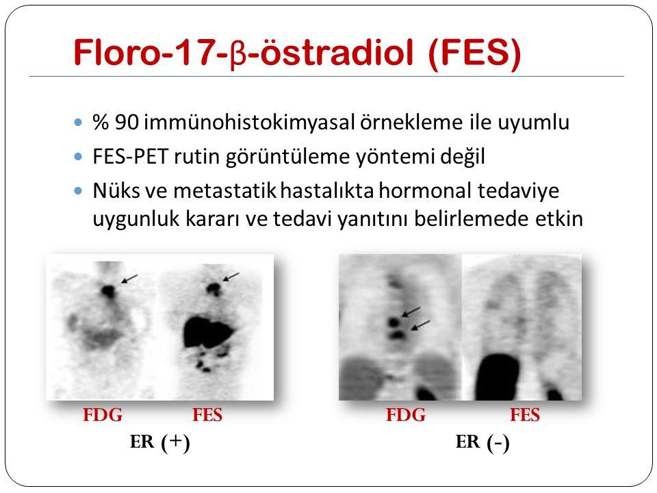 Floro-17- β -östradiol (FES) % 90 immünohistokimyasal örnekleme ile uyumlu FES-PET rutin görüntüleme yöntemi değil Nüks ve metastatik hastalıkta hormo