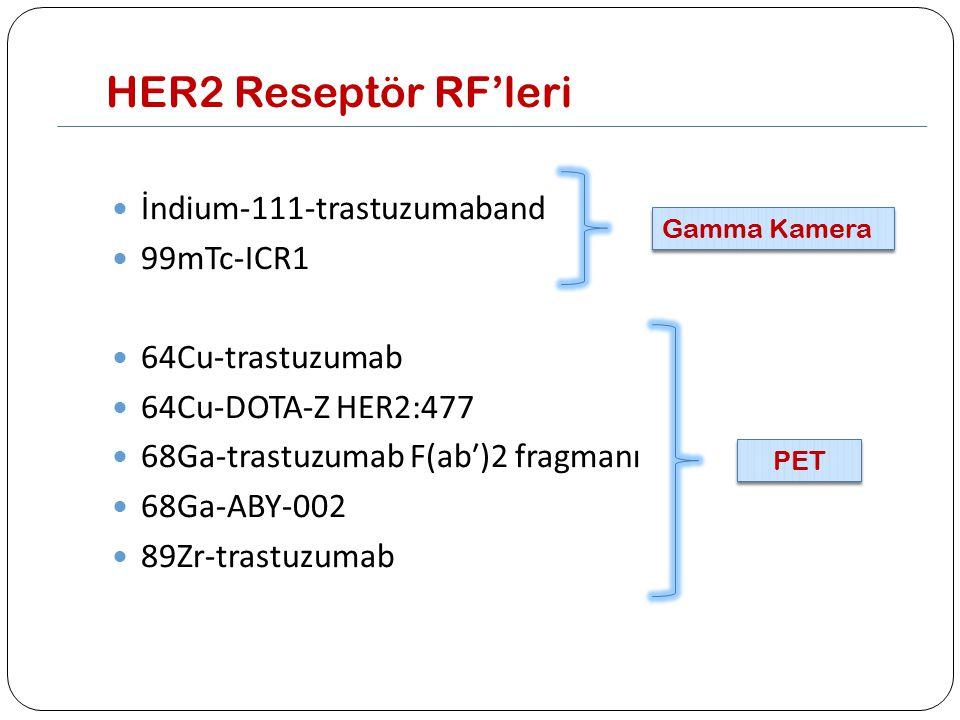 HER2 Reseptör RF'leri İndium-111-trastuzumaband 99mTc-ICR1 64Cu-trastuzumab 64Cu-DOTA-Z HER2:477 68Ga-trastuzumab F(ab′)2 fragmanı 68Ga-ABY-002 89Zr-t