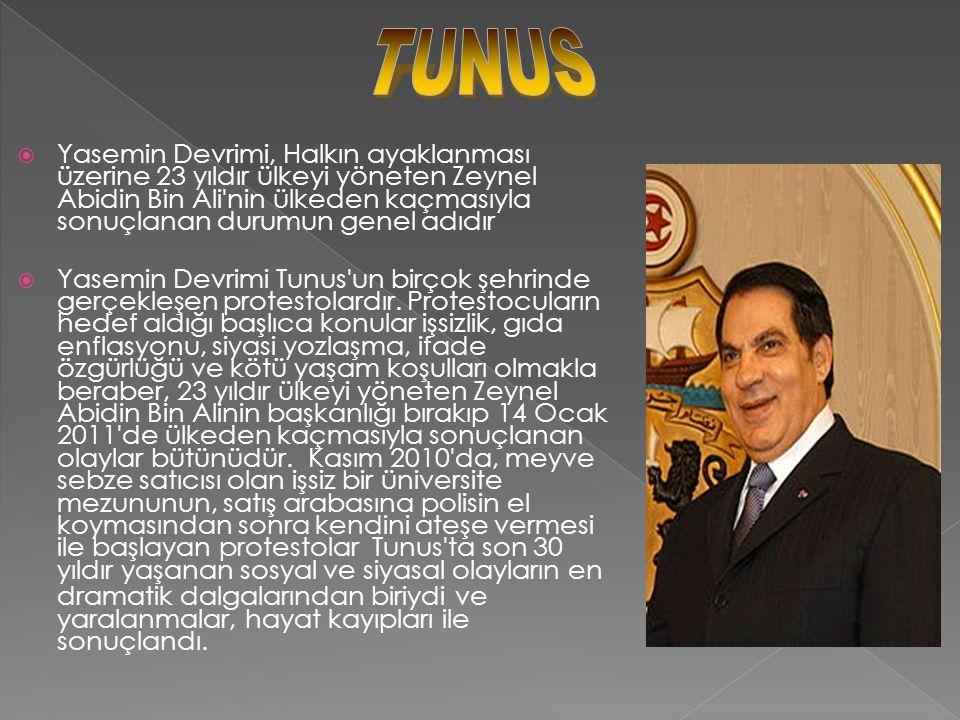  Tunus'ta başlayan halk ayaklanmaları Ortadoğu ve Kuzey Afrika'da domino etkisi göstererek Mısır'a da sıçramış ve otuz yıllık Mübarek rejiminin yıkılmasına yol açmıştır.