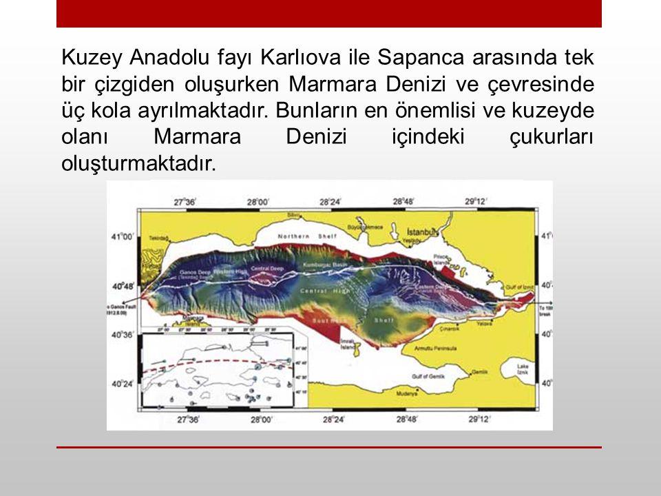 Kuzey Anadolu fayı Karlıova ile Sapanca arasında tek bir çizgiden oluşurken Marmara Denizi ve çevresinde üç kola ayrılmaktadır. Bunların en önemlisi v