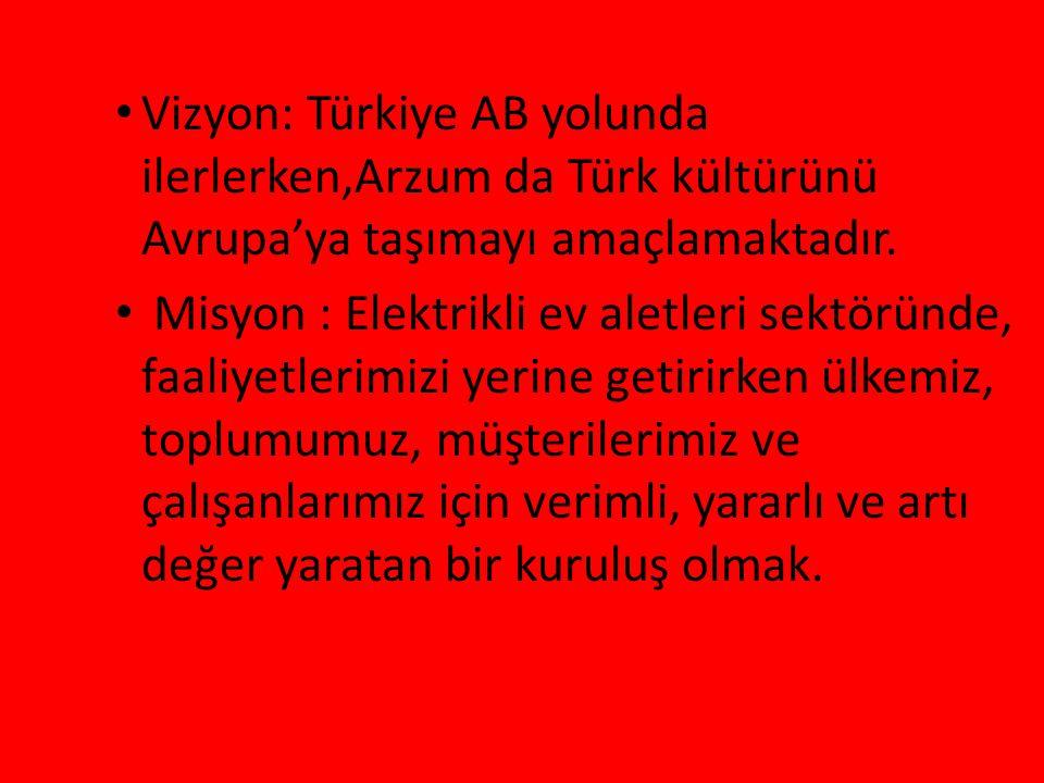 Vizyon: Türkiye AB yolunda ilerlerken,Arzum da Türk kültürünü Avrupa'ya taşımayı amaçlamaktadır. Misyon : Elektrikli ev aletleri sektöründe, faaliyetl