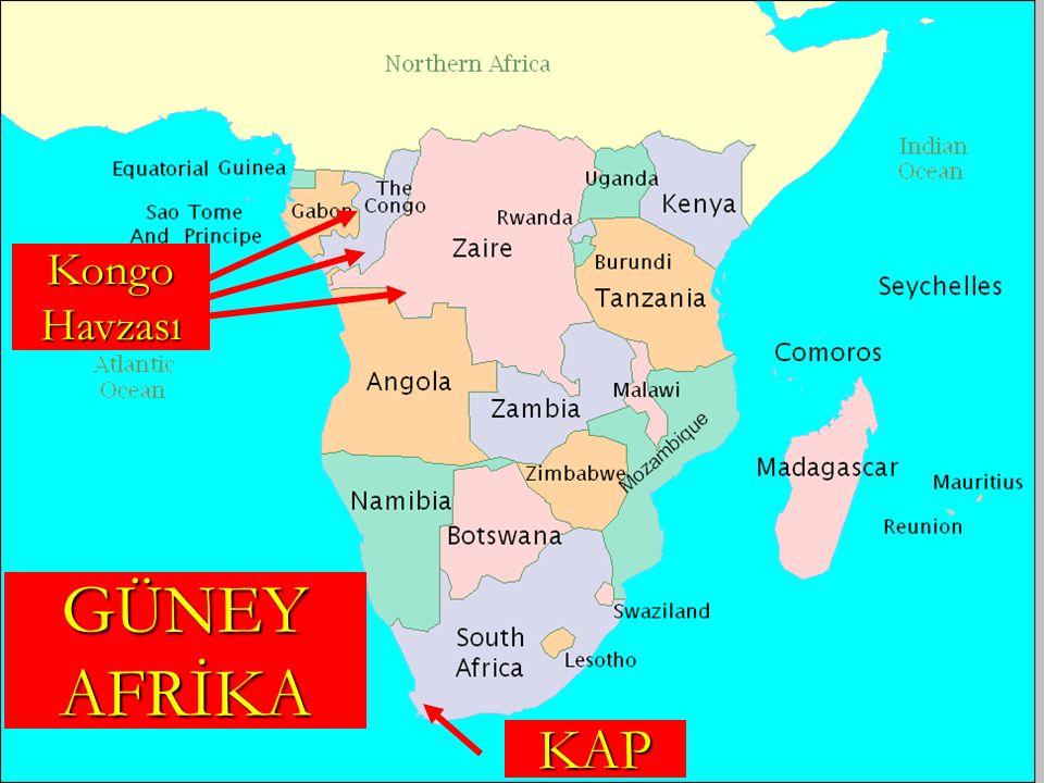GÜNEY AFRİKA KAP Kongo Havzası