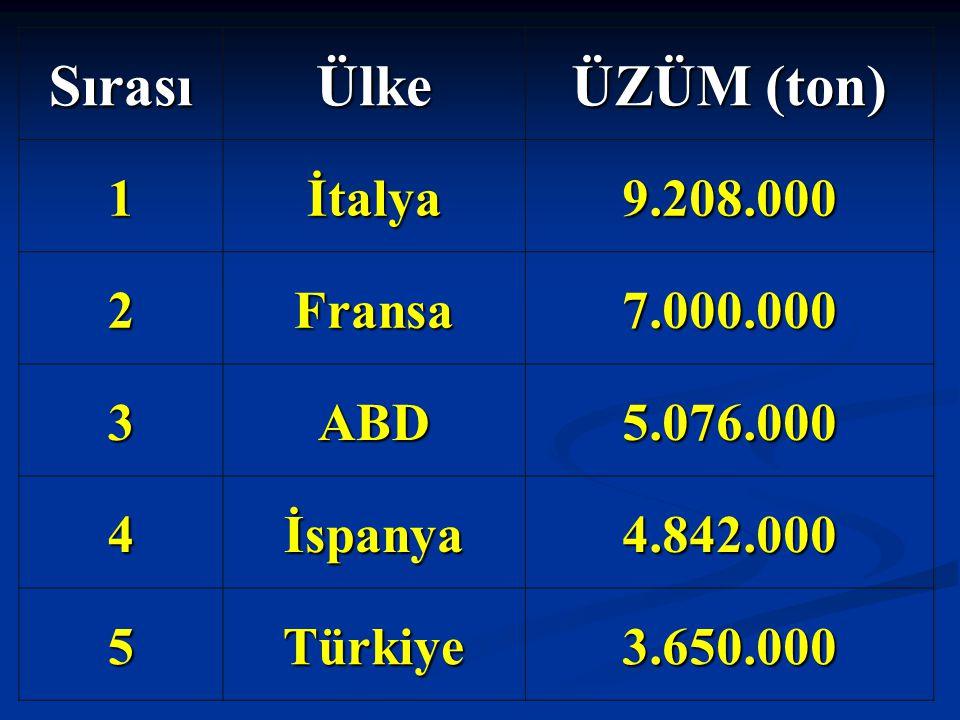 SırasıÜlke ÜZÜM (ton) 1İtalya9.208.000 2Fransa7.000.000 3ABD5.076.000 4İspanya4.842.000 5Türkiye3.650.000