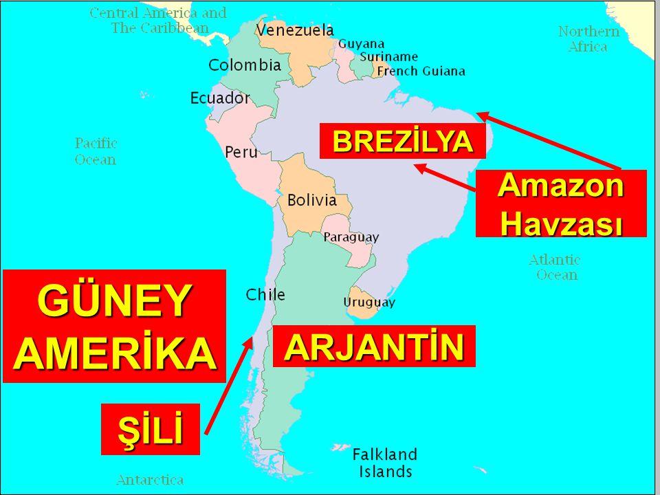 GÜNEY AMERİKA ŞİLİ ARJANTİN BREZİLYA Amazon Havzası