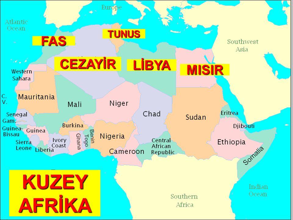 KUZEY AFRİKA FAS CEZAYİR TUNUS LİBYA MISIR