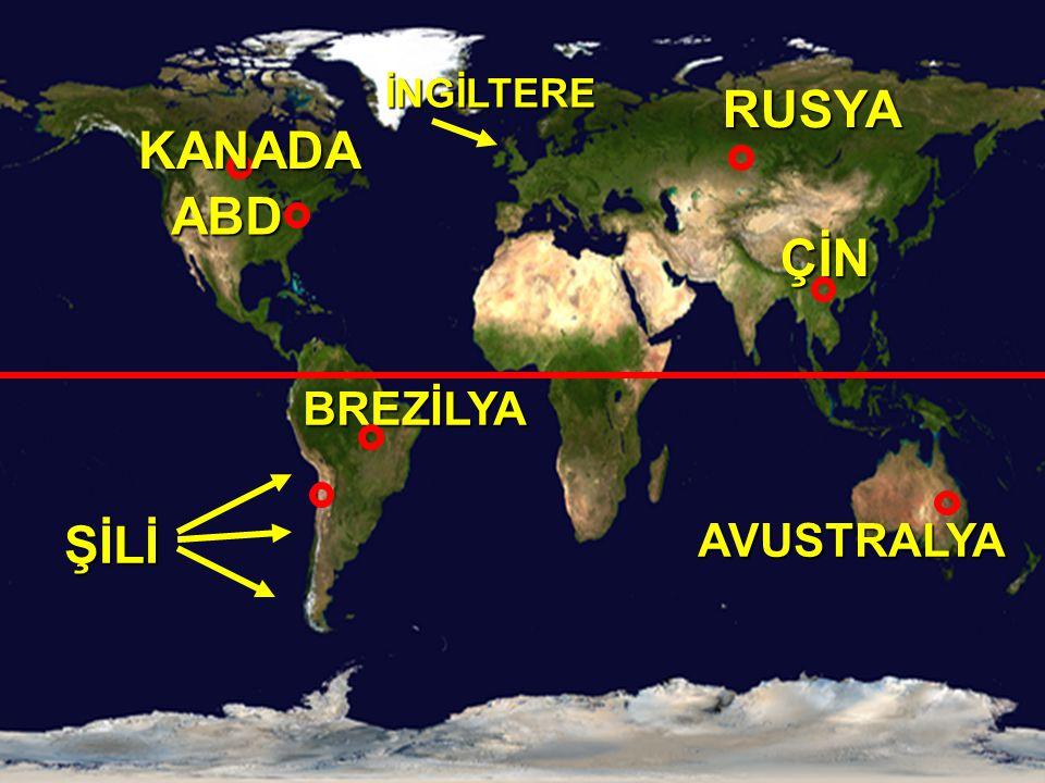 SırasıÜlke PİRİNÇ (ton) 1Çin200.700.000 2Hindistan127.000.000 3Endonezya49.500.000 4Bangladeş30.000.000 5Vietnam28.000.000 6Tayland23.000.000 7 Myanmar (Birmanya) 18.000.000 8Brezilya11.500.000 9Japonya11.300.000 10Filipinler11.200.000