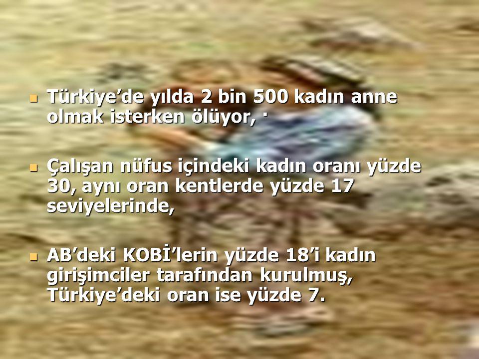 Türkiye'de yılda 2 bin 500 kadın anne olmak isterken ölüyor, · Türkiye'de yılda 2 bin 500 kadın anne olmak isterken ölüyor, · Çalışan nüfus içindeki k