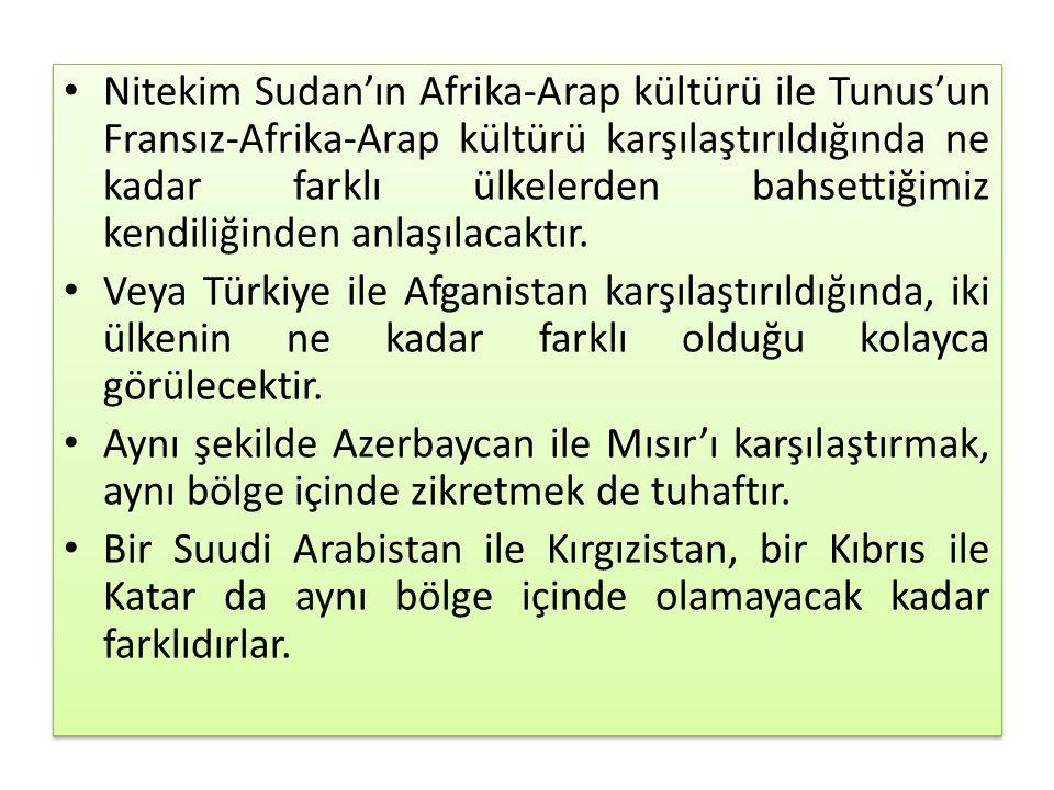 Nitekim Sudan'ın Afrika-Arap kültürü ile Tunus'un Fransız-Afrika-Arap kültürü karşılaştırıldığında ne kadar farklı ülkelerden bahsettiğimiz kendiliğin