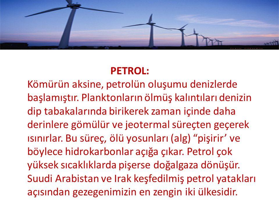 PETROL: Kömürün aksine, petrolün oluşumu denizlerde başlamıştır.