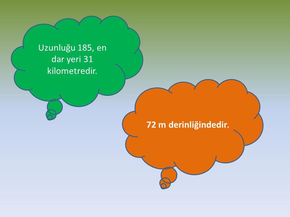 Uzunluğu 185, en dar yeri 31 kilometredir. 72 m derinliğindedir.
