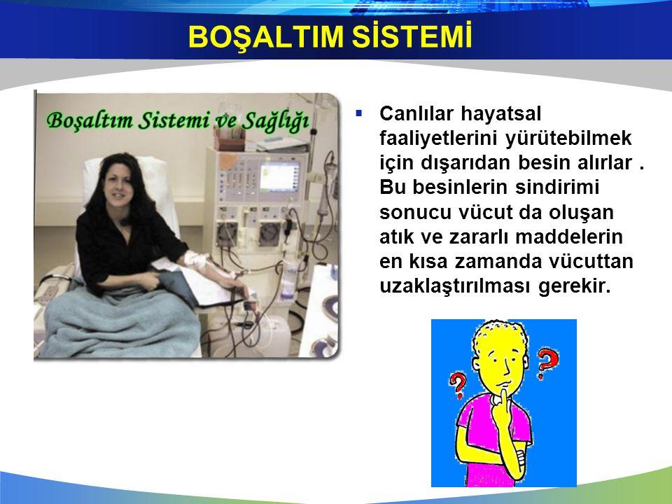 Boşaltım sisteminin sağlığını korumak için doktorumuzun önerilerini dinleyelim!!.