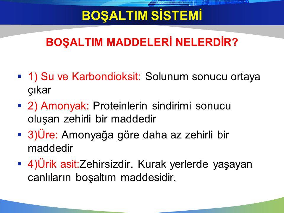 BOŞALTIM MADDELERİ NELERDİR?  1) Su ve Karbondioksit: Solunum sonucu ortaya çıkar  2) Amonyak: Proteinlerin sindirimi sonucu oluşan zehirli bir madd