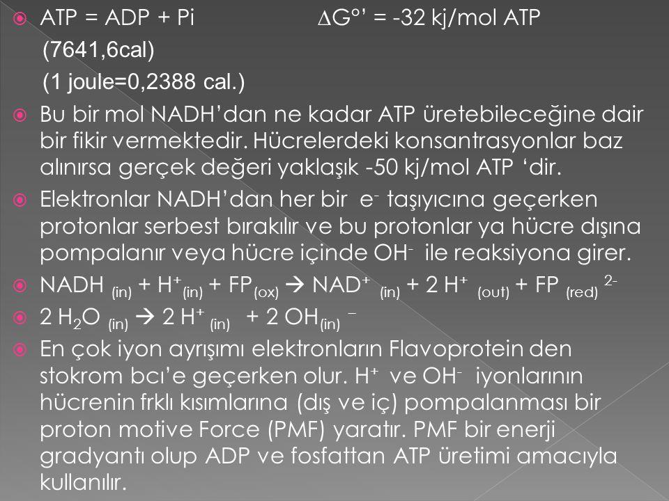  ATP = ADP + Pi ∆G°' = -32 kj/mol ATP (7641,6cal) (1 joule=0,2388 cal.)  Bu bir mol NADH'dan ne kadar ATP üretebileceğine dair bir fikir vermektedir
