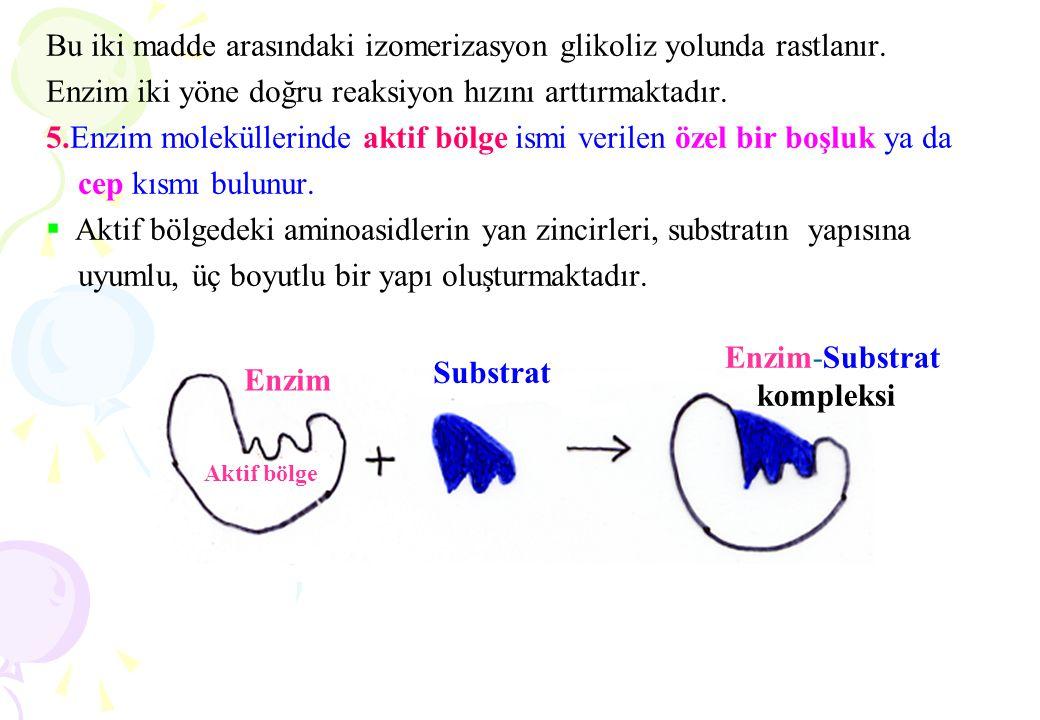Bu iki madde arasındaki izomerizasyon glikoliz yolunda rastlanır. Enzim iki yöne doğru reaksiyon hızını arttırmaktadır. 5.Enzim moleküllerinde aktif b