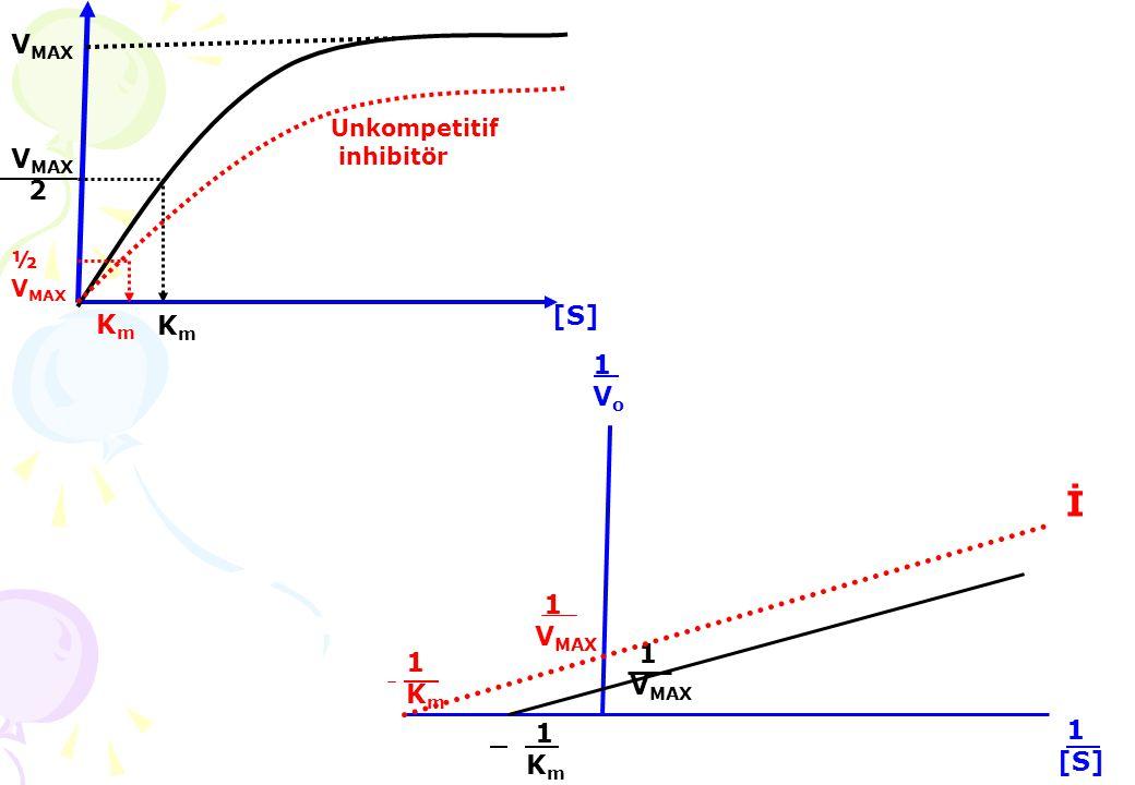 KmKm KmKm Unkompetitif inhibitör V MAX 2 V MAX [S][S] 1Km 1Km 1[S] 1[S] 1Vo1Vo 1Km1Km 1 V MAX İ 1 V MAX ½ V MAX