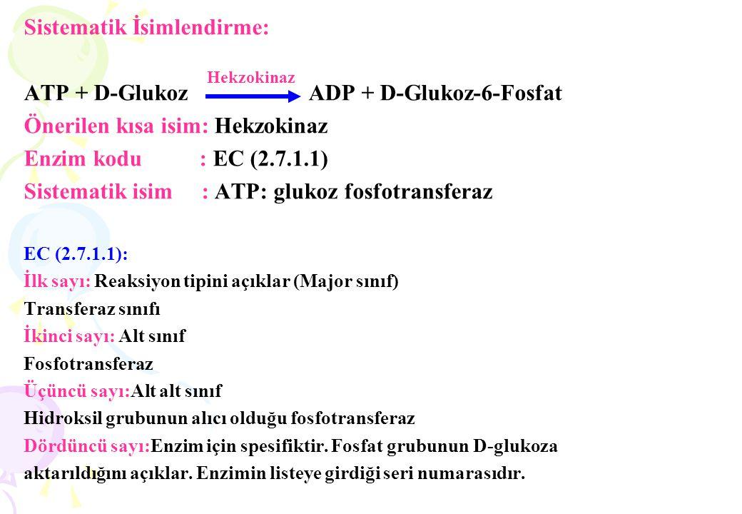 Sistematik İsimlendirme: ATP + D-Glukoz ADP + D-Glukoz-6-Fosfat Önerilen kısa isim: Hekzokinaz Enzim kodu : EC (2.7.1.1) Sistematik isim : ATP: glukoz