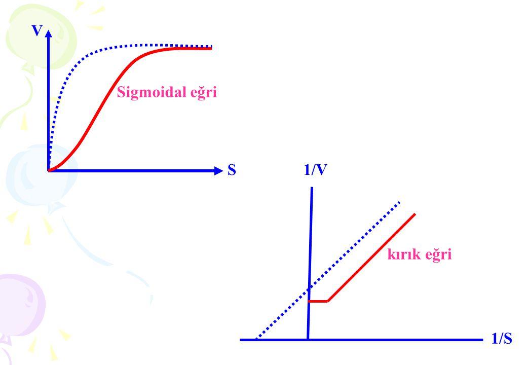 V Sigmoidal eğri S kırık eğri 1/V 1/S