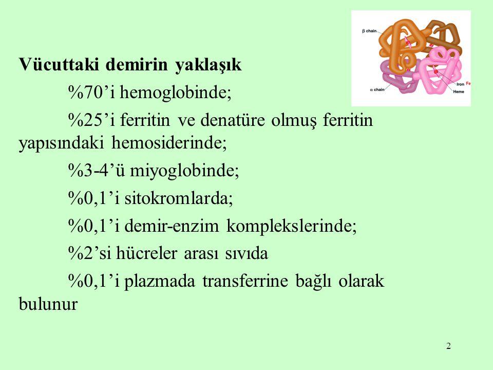 2 Vücuttaki demirin yaklaşık %70'i hemoglobinde; %25'i ferritin ve denatüre olmuş ferritin yapısındaki hemosiderinde; %3-4'ü miyoglobinde; %0,1'i sito