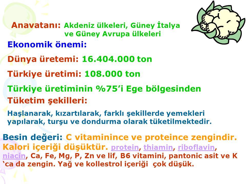 Anavatanı: Akdeniz ülkeleri, Güney İtalya ve Güney Avrupa ülkeleri Ekonomik önemi: Dünya üretemi: 16.404.000 ton Türkiye üretimi: 108.000 ton Türkiye üretiminin %75'i Ege bölgesinden Tüketim şekilleri: Haşlanarak, kızartılarak, farklı şekillerde yemekleri yapılarak, turşu ve dondurma olarak tüketilmektedir.