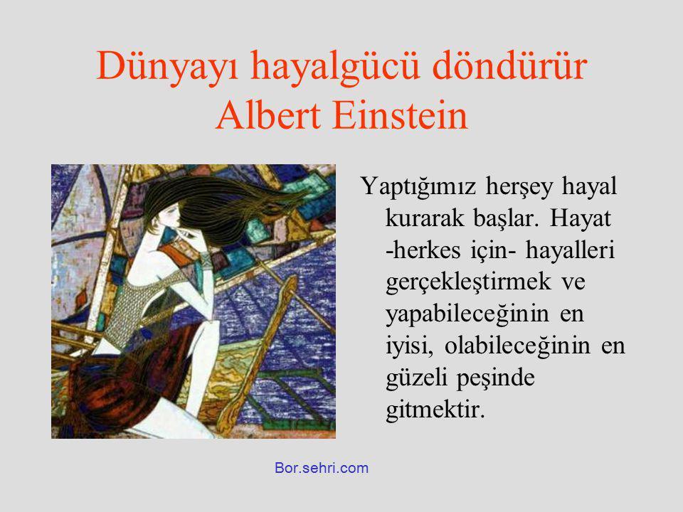 Dünyayı hayalgücü döndürür Albert Einstein Yaptığımız herşey hayal kurarak başlar. Hayat -herkes için- hayalleri gerçekleştirmek ve yapabileceğinin en