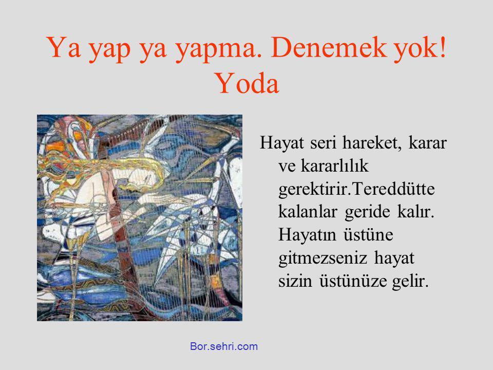 Ya yap ya yapma. Denemek yok! Yoda Hayat seri hareket, karar ve kararlılık gerektirir.Tereddütte kalanlar geride kalır. Hayatın üstüne gitmezseniz hay