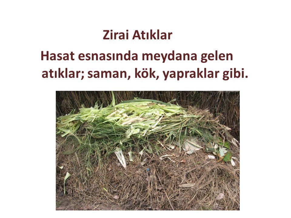 Zirai Atıklar Hasat esnasında meydana gelen atıklar; saman, kök, yapraklar gibi.