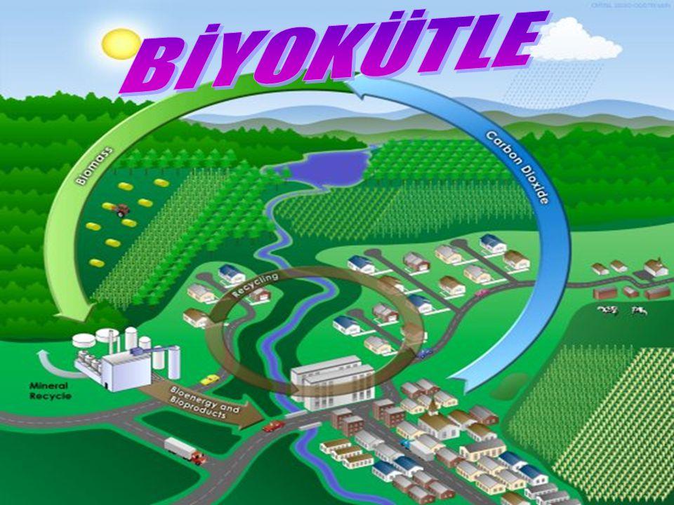 Biyoyakıt, içeriklerinin hacim olarak en az %80 i son on yıl içerisinde toplanmış canlı organizmalardan elde edilmiş, her türlü yakıt olarak tanımlanır.