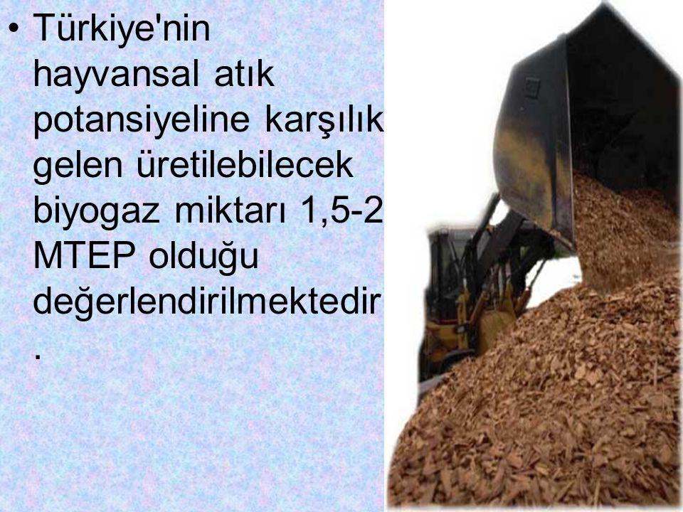 Türkiye'nin hayvansal atık potansiyeline karşılık gelen üretilebilecek biyogaz miktarı 1,5-2 MTEP olduğu değerlendirilmektedir.