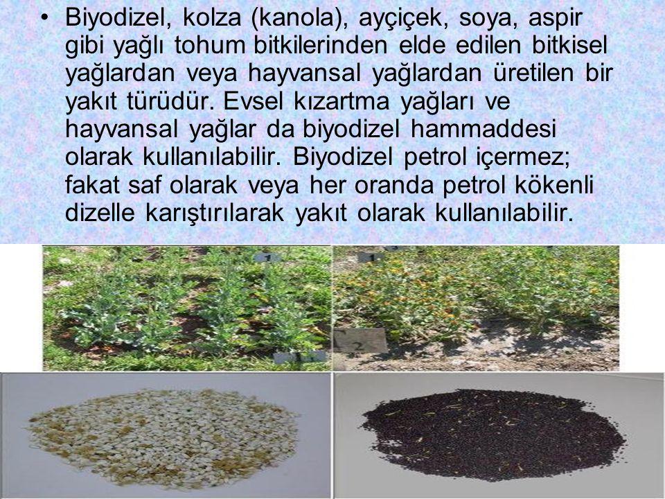 Biyodizel, kolza (kanola), ayçiçek, soya, aspir gibi yağlı tohum bitkilerinden elde edilen bitkisel yağlardan veya hayvansal yağlardan üretilen bir ya