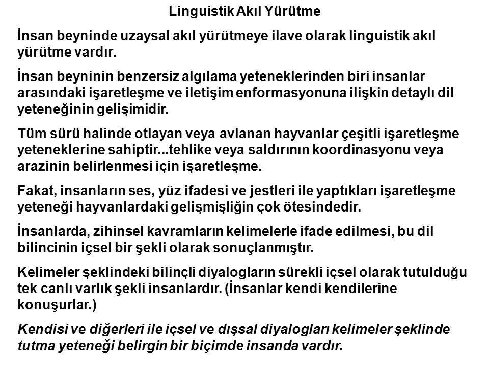 Linguistik Akıl Yürütme İnsan beyninde uzaysal akıl yürütmeye ilave olarak linguistik akıl yürütme vardır. İnsan beyninin benzersiz algılama yetenekle