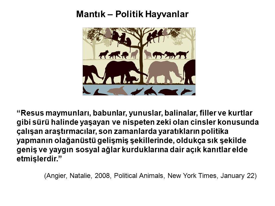 """Mantık – Politik Hayvanlar """"Resus maymunları, babunlar, yunuslar, balinalar, filler ve kurtlar gibi sürü halinde yaşayan ve nispeten zeki olan cinsler"""