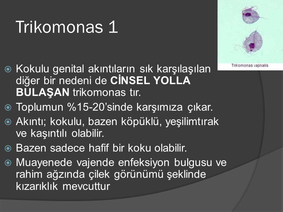 Trikomonas 1  Kokulu genital akıntıların sık karşılaşılan diğer bir nedeni de CİNSEL YOLLA BULAŞAN trikomonas tır.  Toplumun %15-20'sinde karşımıza