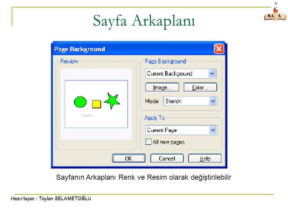 Hazırlayan : Taylan SELAMETOĞLU Sayfa Arkaplanı Sayfanın Arkaplanı Renk ve Resim olarak değiştirilebilir