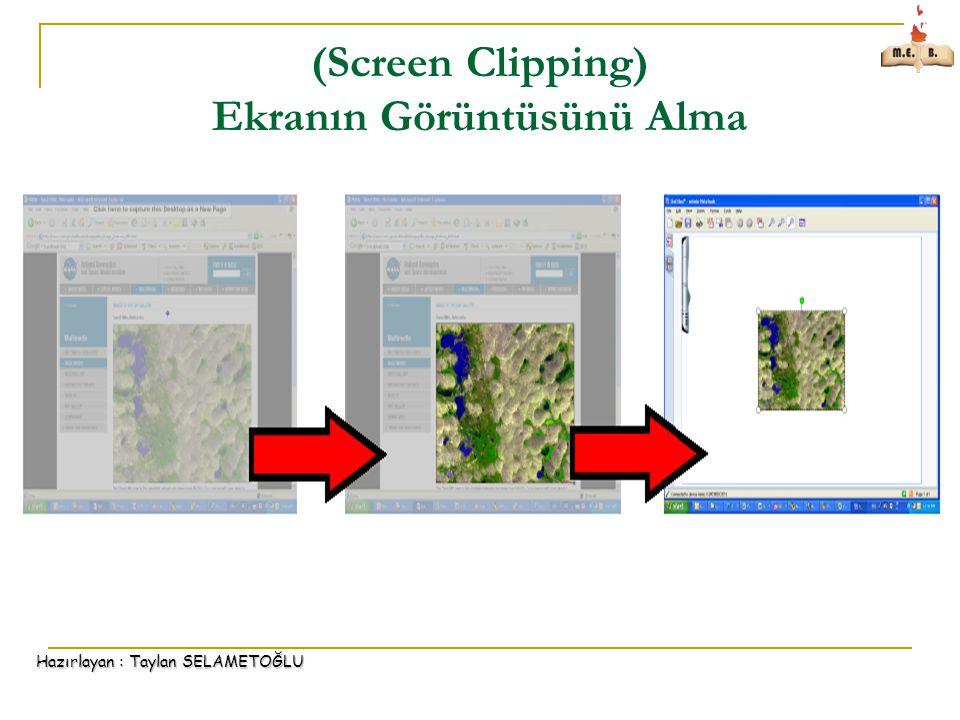 Hazırlayan : Taylan SELAMETOĞLU (Screen Clipping) Ekranın Görüntüsünü Alma