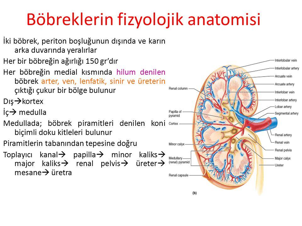 Böbreklerin Görevleri 1.Su ve elektrolit dengesinin düzenlenmesi 2.Vücut sıvılarının osmolalitesinin ve elektrolit yoğunluğunun düzenlenmesi 3.Asit ba