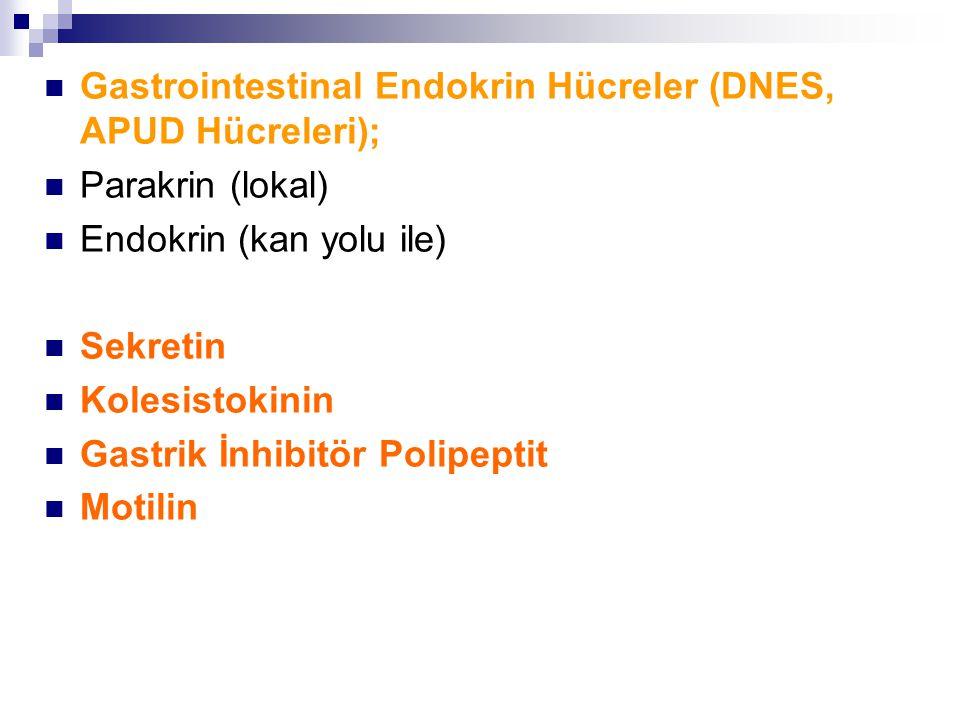 Gastrointestinal Endokrin Hücreler (DNES, APUD Hücreleri); Parakrin (lokal) Endokrin (kan yolu ile) Sekretin Kolesistokinin Gastrik İnhibitör Polipeptit Motilin