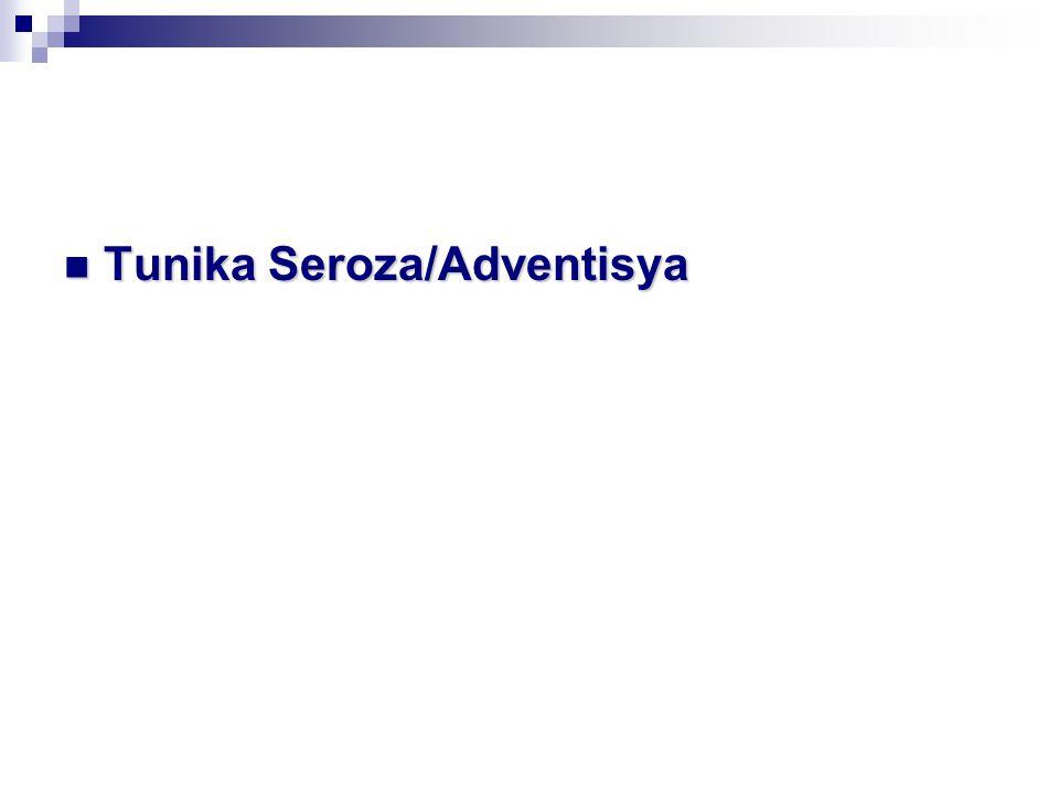 Tunika Seroza/Adventisya Tunika Seroza/Adventisya