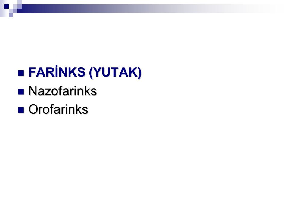 FARİNKS (YUTAK) FARİNKS (YUTAK) Nazofarinks Nazofarinks Orofarinks Orofarinks